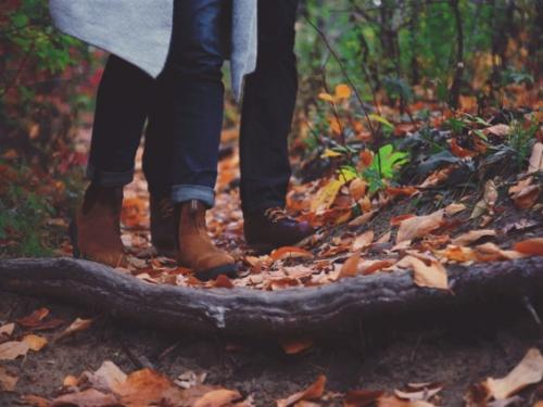 Séjour d'automne