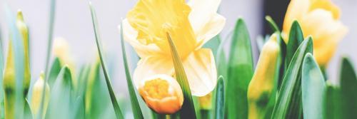 Séjours de Pâques