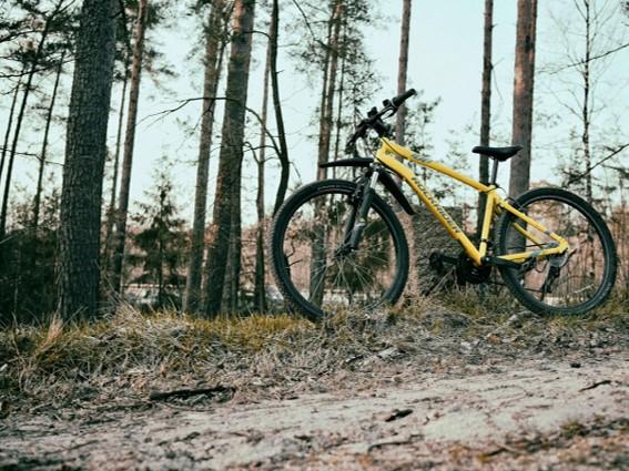 Escapade en vélo en Ardenne